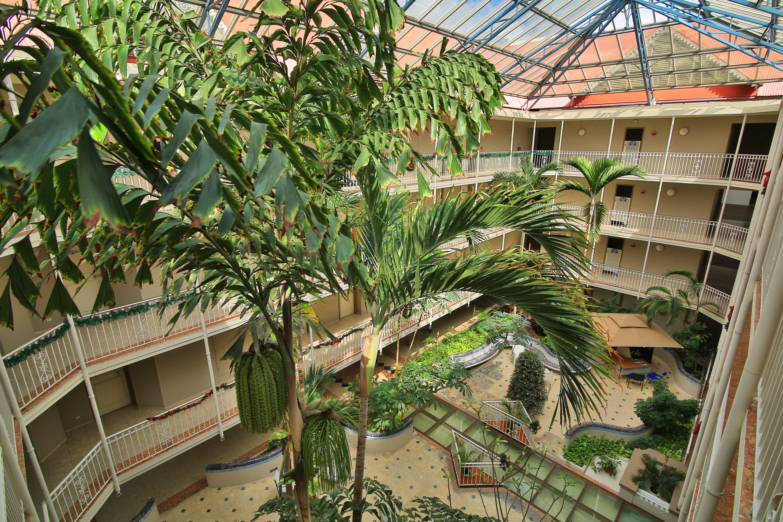 Le vaste lobby tropical de plus de 600m2 offre un espace