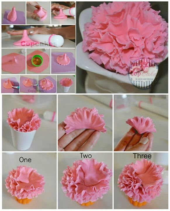 Carnations Picture Tutorial Fondant Flower Tutorial Sugar Flowers Tutorial Gum Paste Flowers