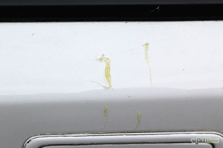 Remove Tree Sap From Your Car Remove Tree Sap Car How To Remove