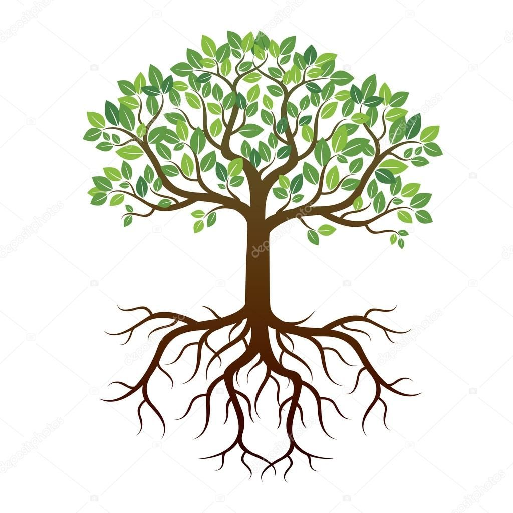 Color Tree And Roots Vector Illustration Tree Drawing Simple Roots Drawing Tree With Roots Drawing Pictures of trees showing roots. color tree and roots vector