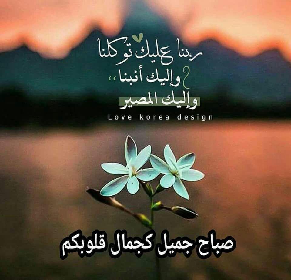 Pin By هبة ابو النيل On صباح الخير Good Morning Photo Quotes Morning Images Beautiful Morning