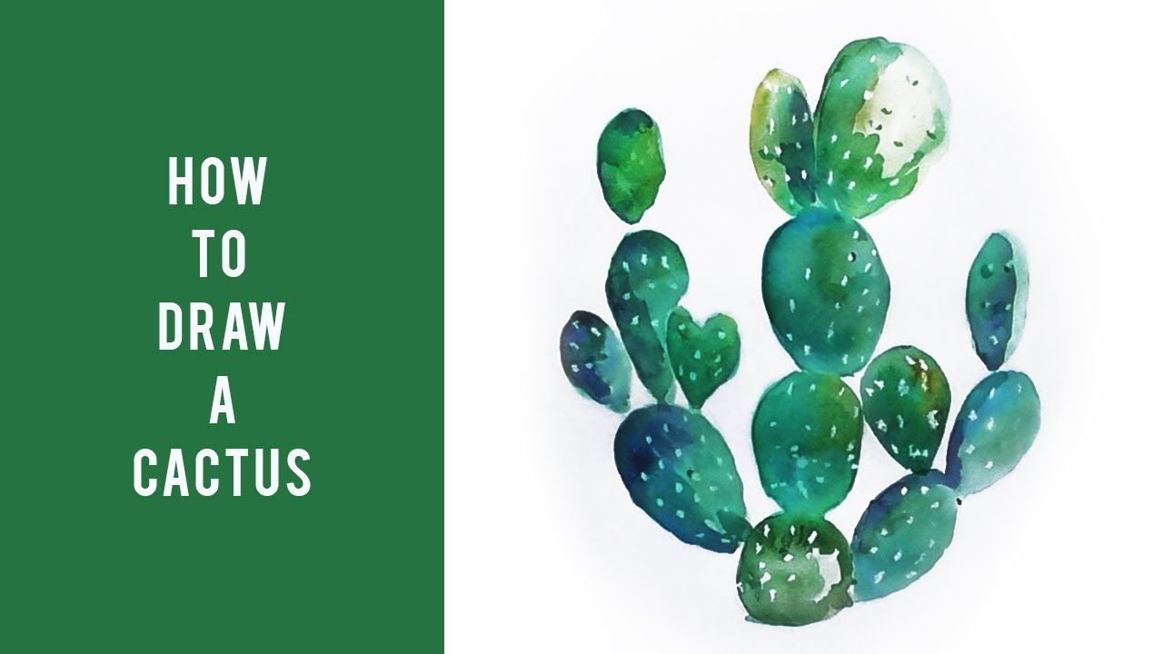 How To Draw A Cactus Drawing Tutorial For Beginners Easy Step