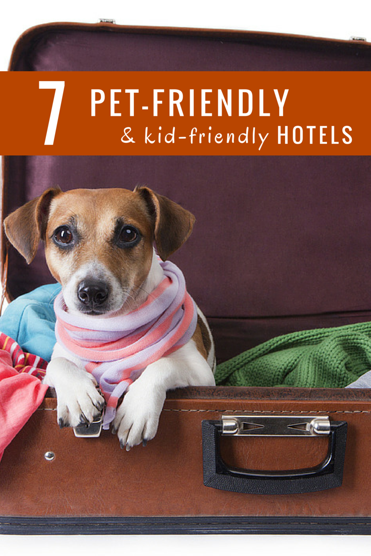 7 Great Hotel Chains For Pet Friendly Travel Pet Friendly Hotels