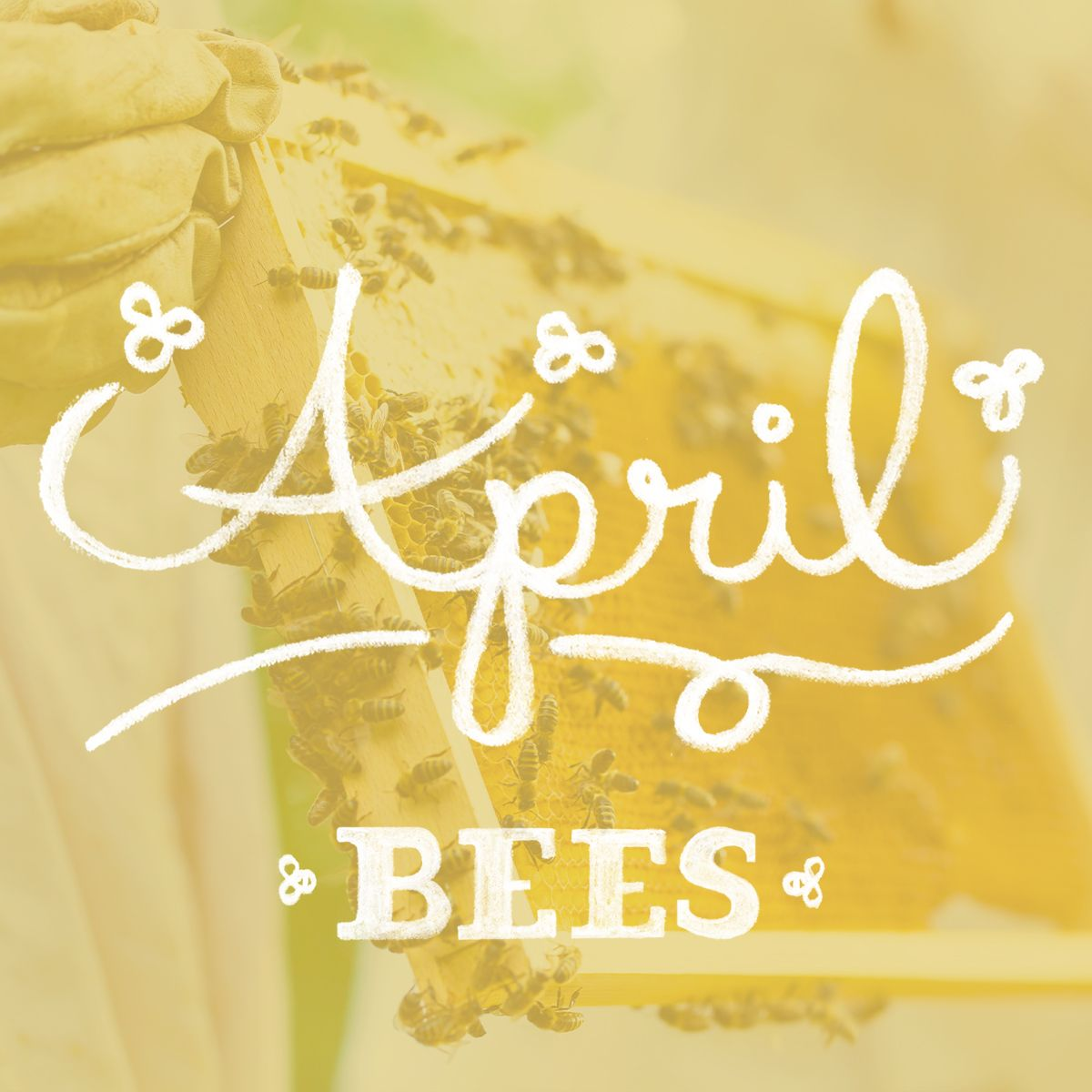 Beekeeping tips in April. Beekeeping Bees Beehive