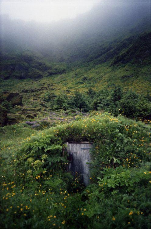 Greenery Nature Hidden Places Landscape