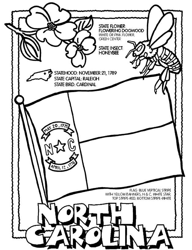 North Carolina Coloring Page Nc Social Studies State Symbols