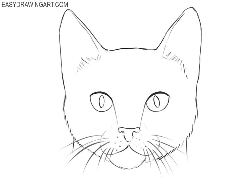 How To Draw A Cat Face Easy Drawing Art Cat Face Drawing Cats Art Drawing Easy Animal Drawings