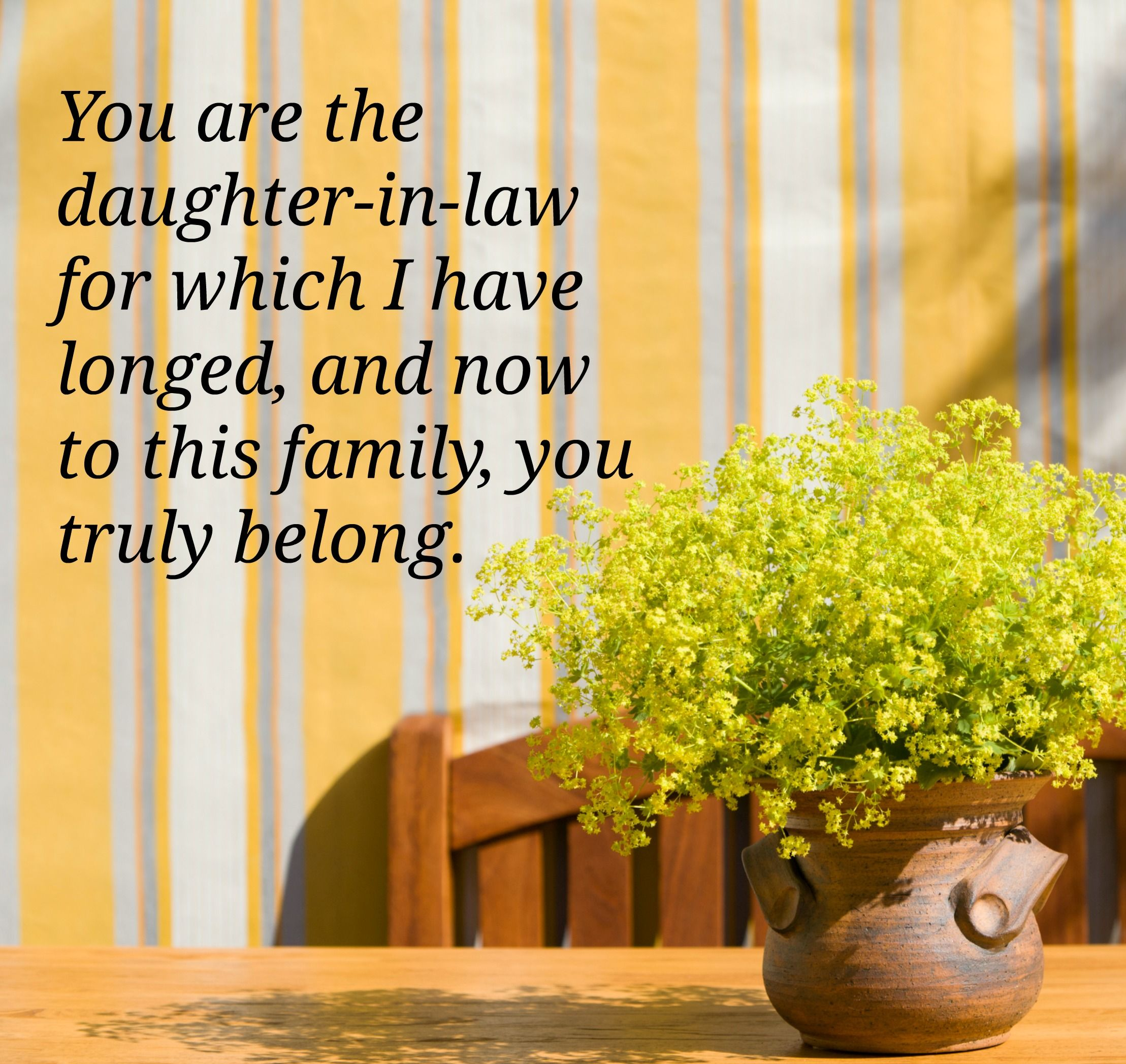Your Son-In-Law's Quotes Are Over Longing