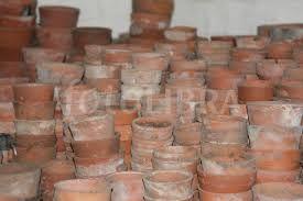 terracotta plant pots - Google Search