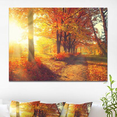Charlton Home® Autumnal Trees in Sunrays - Wrapped Canvas Photograph Print   Wayfair.ca