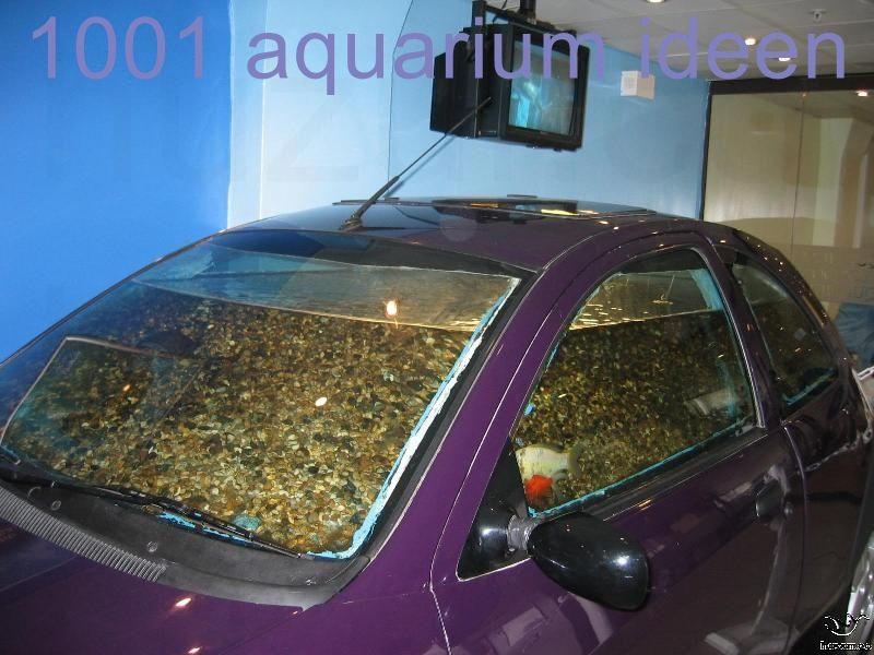 Aquarium Ideen Gestaltung In 2020 Aquarium Design Aquarium Diy Aquarium