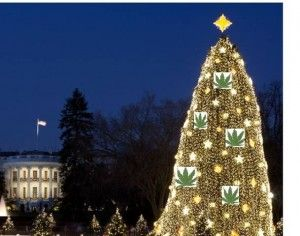 """While Sasha, Malia, and Michelle Obama greeted the arrival of the Blue Room's Christmas tree on Friday, many in Colorado finished their brownie baking and hemp ornament making just in time to ensure their boxes would be packed for the shipment earmarked to deck the other """"O Tannenbaum,"""" which will dawn 5,000 of their hand-crafted decorations. Yes, those clever folks from Colorado have worked 'round the clock, only taking their self-authorized 4:20 breaks in order to meet former President…"""