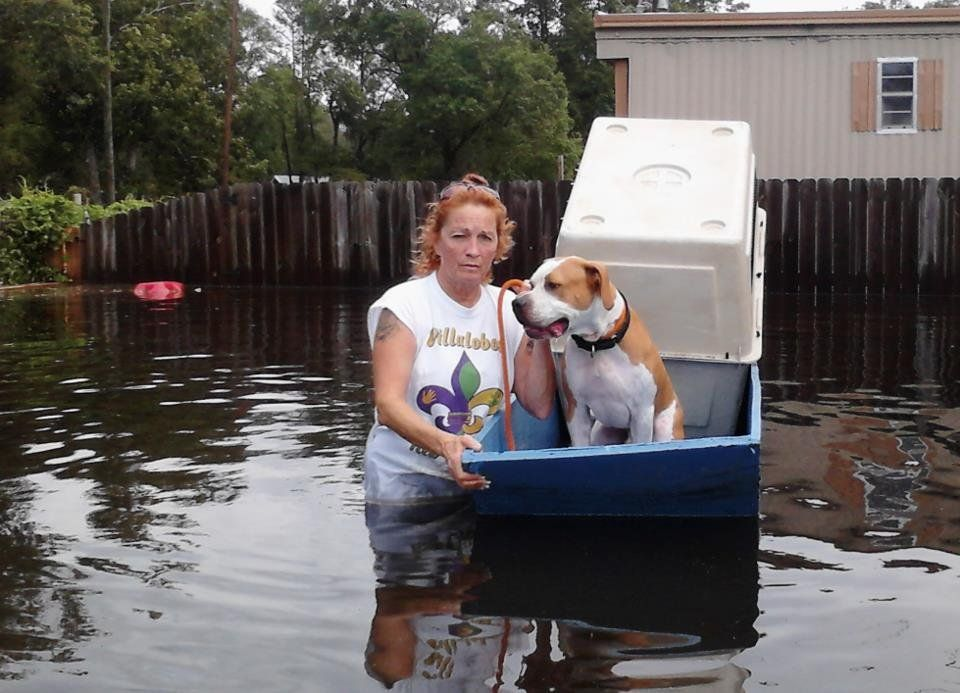 $10 Will help supply two dogs with a necessity item such as a food bowl, leash, collar, or blanket. - Villalobos Rescue Center Hurricane Disaster Relief