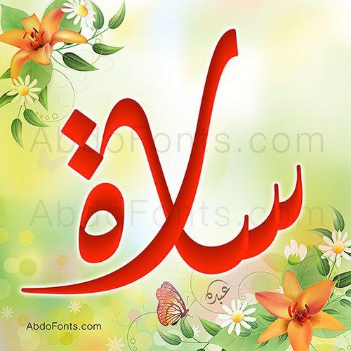 سارة Sara Islamic Calligraphy Islamic Art Cartoon Art