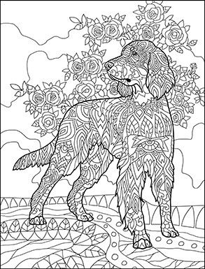 Doodle Dogs Coloring Book for Adults by Amanda Neel | Cats + Dogs ...