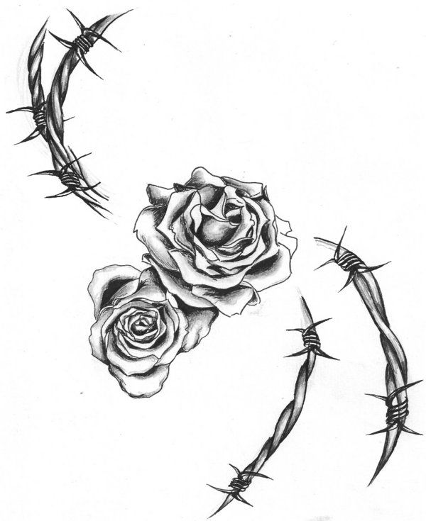 Barbed Wire Rose Tattoo: Barbwire_and_roses_by_darthhoney.jpg (600×735)