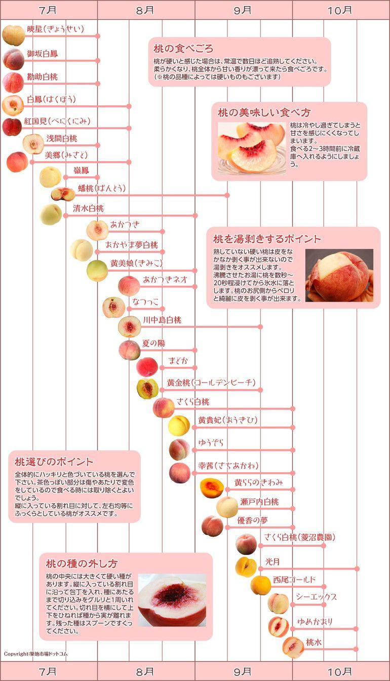 Twitterで話題 あの桃の家系図はこうして誕生しました と中の人が語る