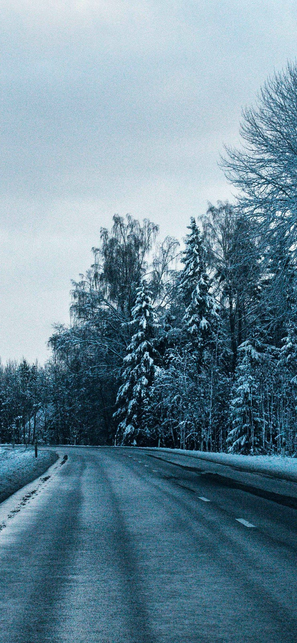 Road Winter Trees Turn Wallpaper Iphone X Wallpaper Winter Trees Wallpaper Iphone Wallpaper Hd wallpaper sunset horizon road winter