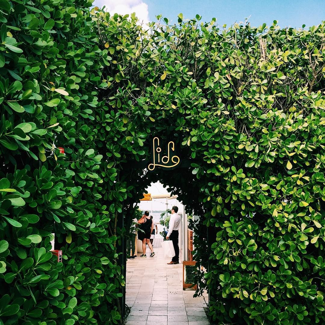 Pinterest Eats 305 The Lido Restaurant Standard Hotel Miami Beach