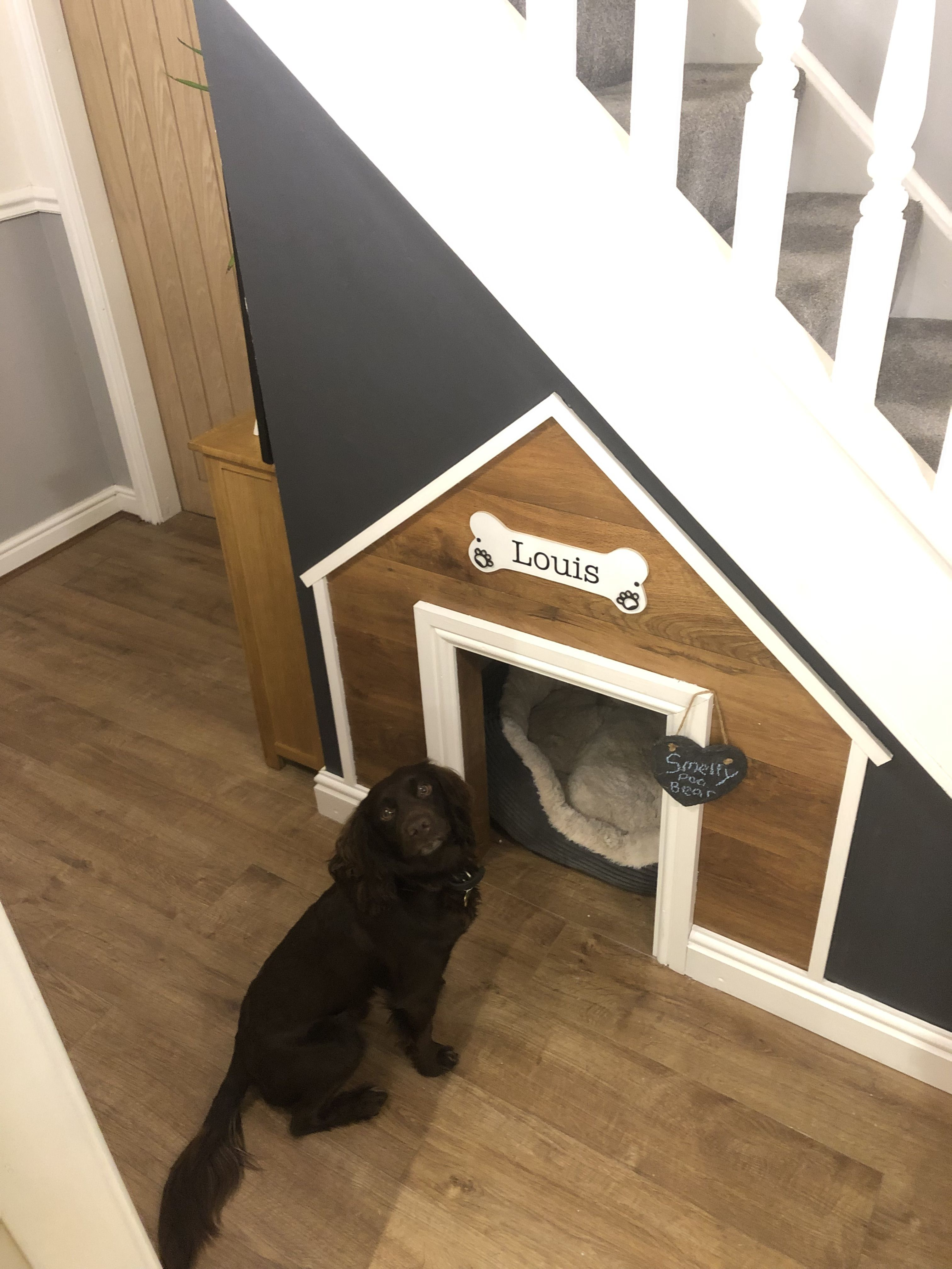 Dogs Bed Under The Stairs Dog Rooms Dog Under Stairs Under