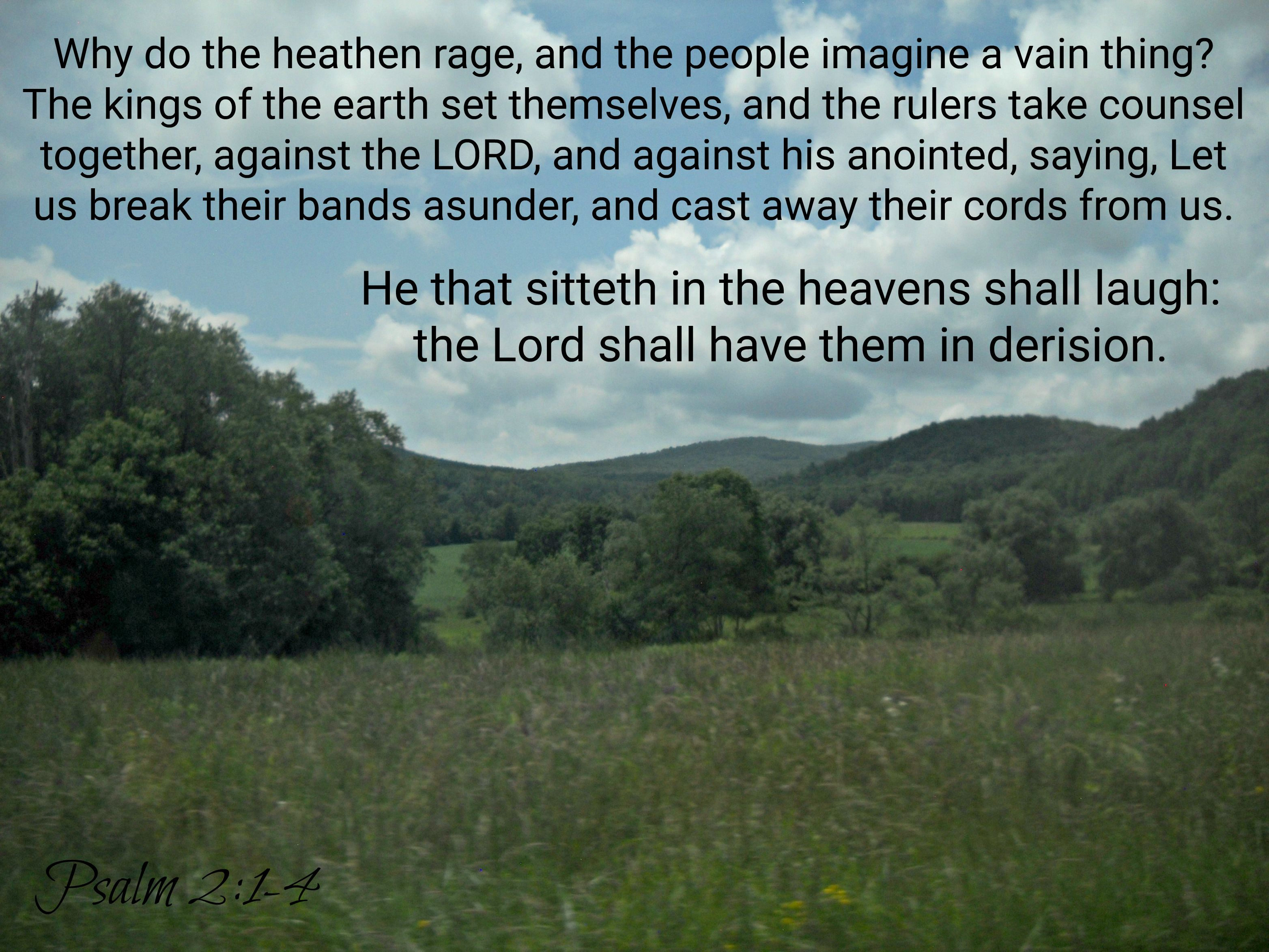 Psalms 2:1-4 1 Why do the heathen rage, and the people imagine a vain thing? 2 The kings of the earth set themselves,  and the r… | Book of psalms, Psalms, Sayings