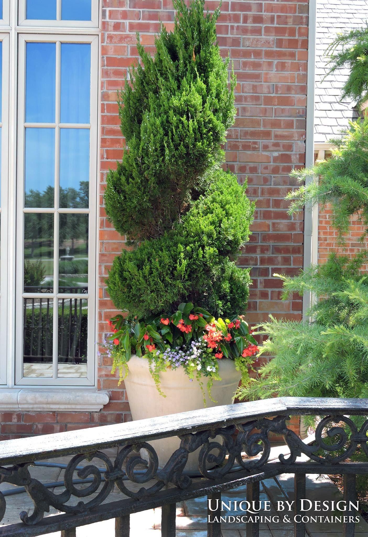 Payday Loans For Landscape gardener