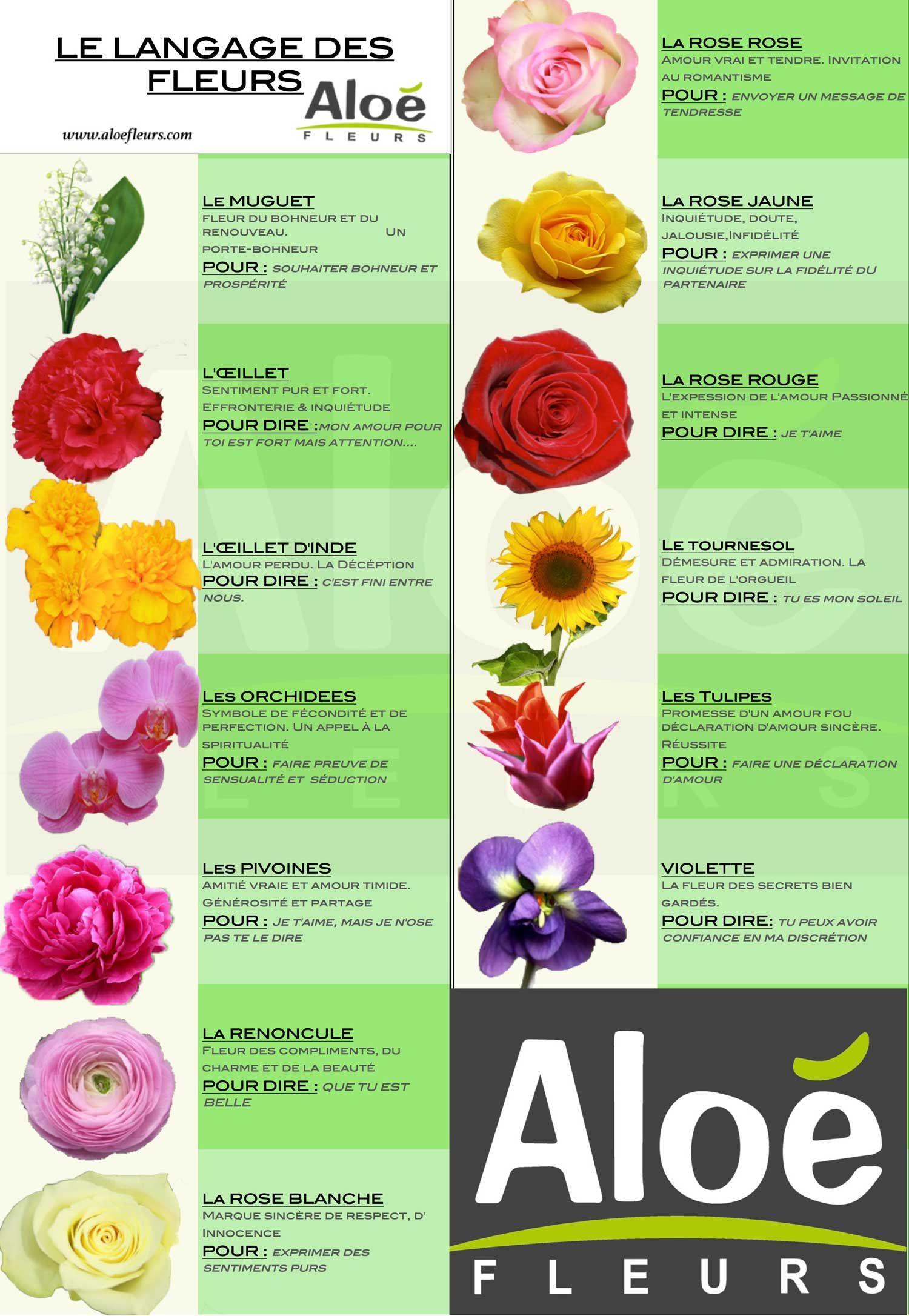 d couvrez le langage des fleurs en france fleurs pinterest. Black Bedroom Furniture Sets. Home Design Ideas