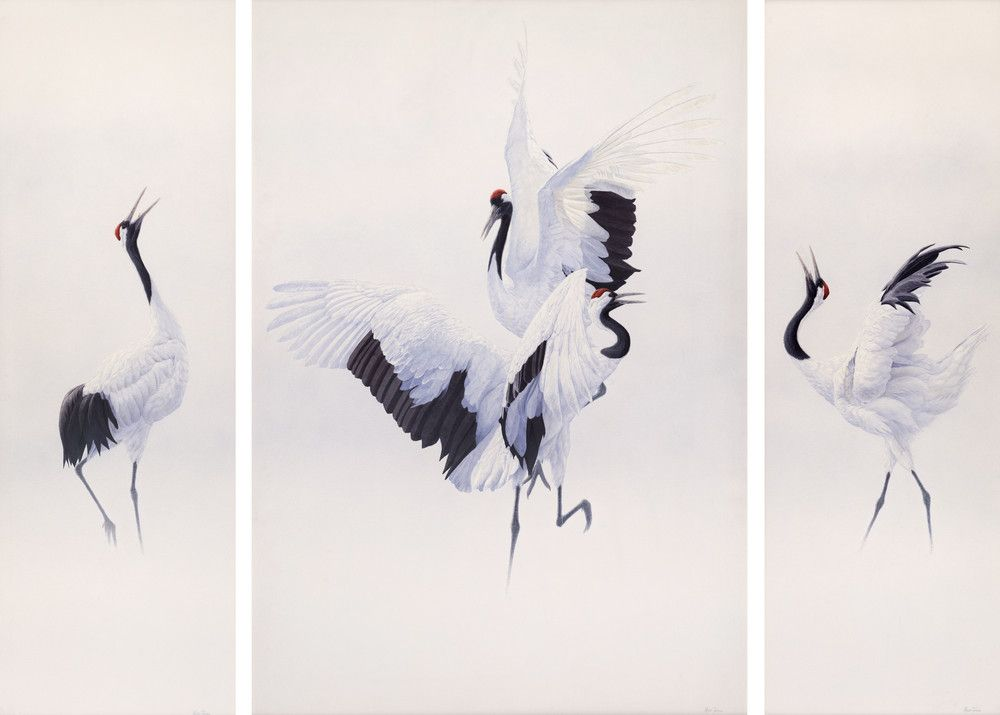 Cranes dancing by Renso Tamse | Painting | Pinterest ... - photo#23