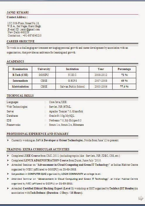 Examples Or Resumes Sample Template Example Ofexcellent Curriculum