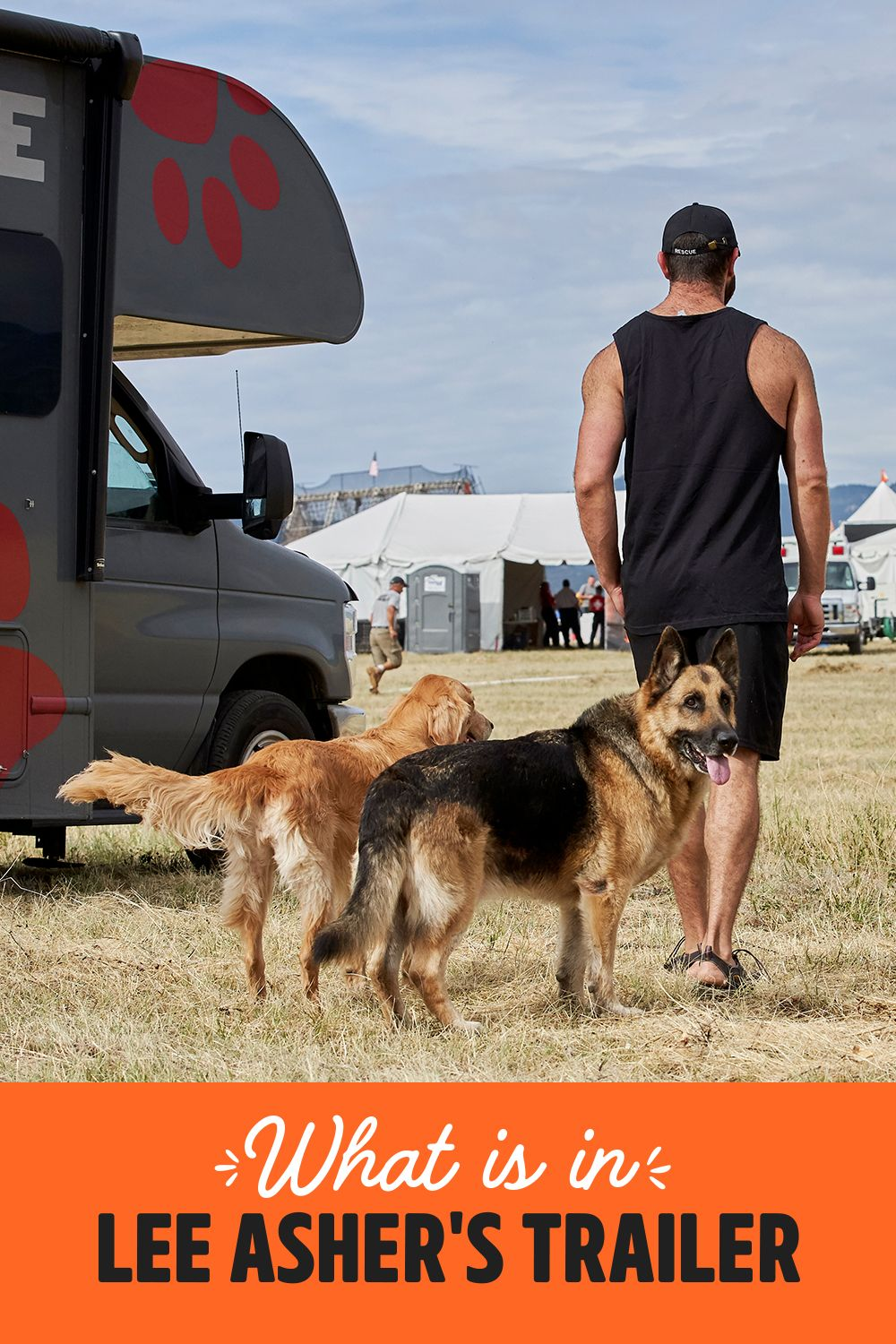 Lee Asher Travels The Us In His Rv With His 11 Dogs And Here S Why Pet Adoption Event Pet Adoption Dogs