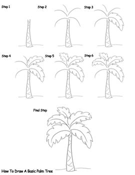 how to draw palm trees gathering art pinterest drawings palm Coconut Tree Plant how to draw palm trees