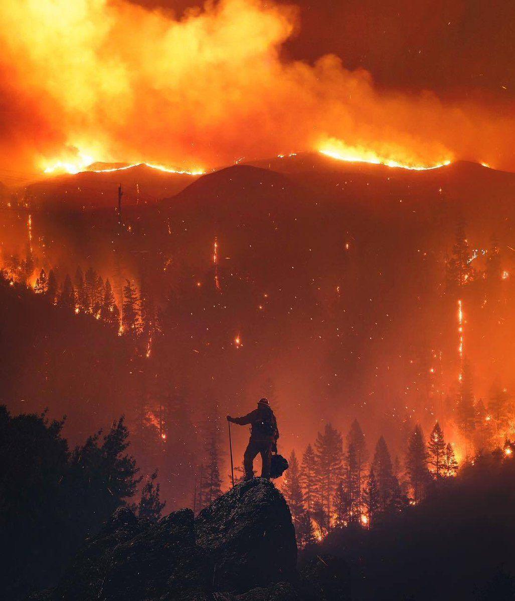 Stone on Twitter Wildland firefighter, California