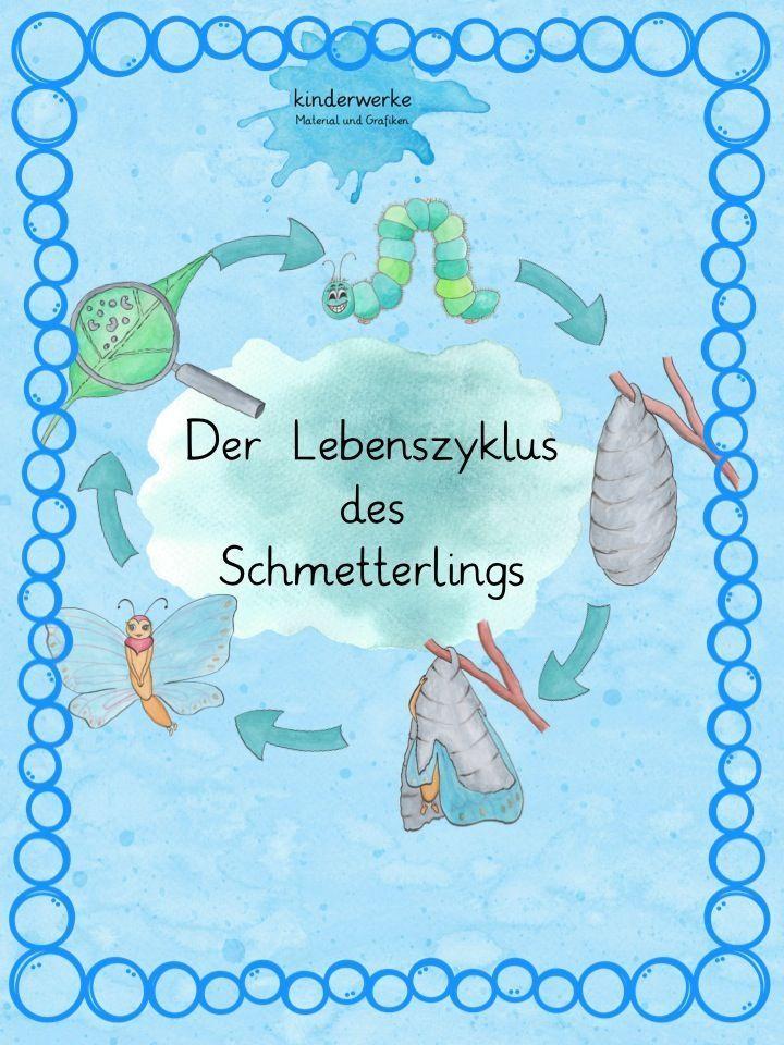 Schmetterling Lebenszyklus – DaZ / DaF, Deutsch, Sachunterricht ...