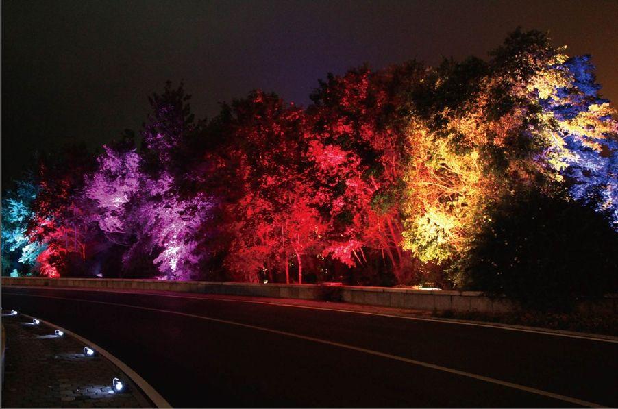 Pride Trees Landscape Lighting Design Landscape Lighting Flood Lights