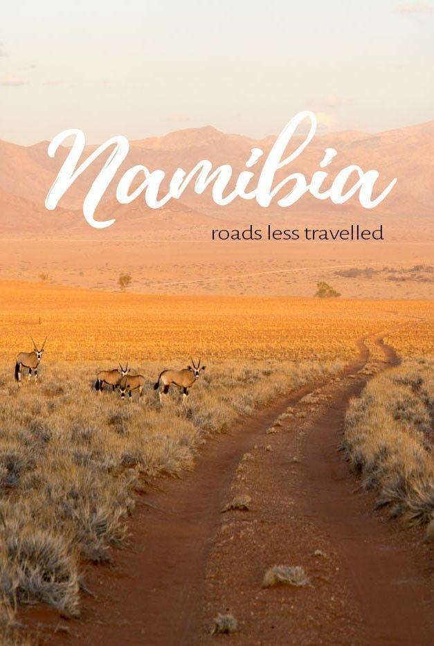 Namibia Roadtrip | 10 Tage Abenteuer, Tiere & Gin Tonic