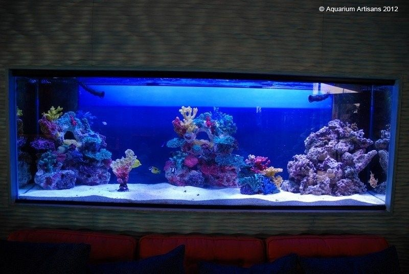 decorating ideas fish tanks and aquarium on pinterest - Freshwater Aquarium Design Ideas