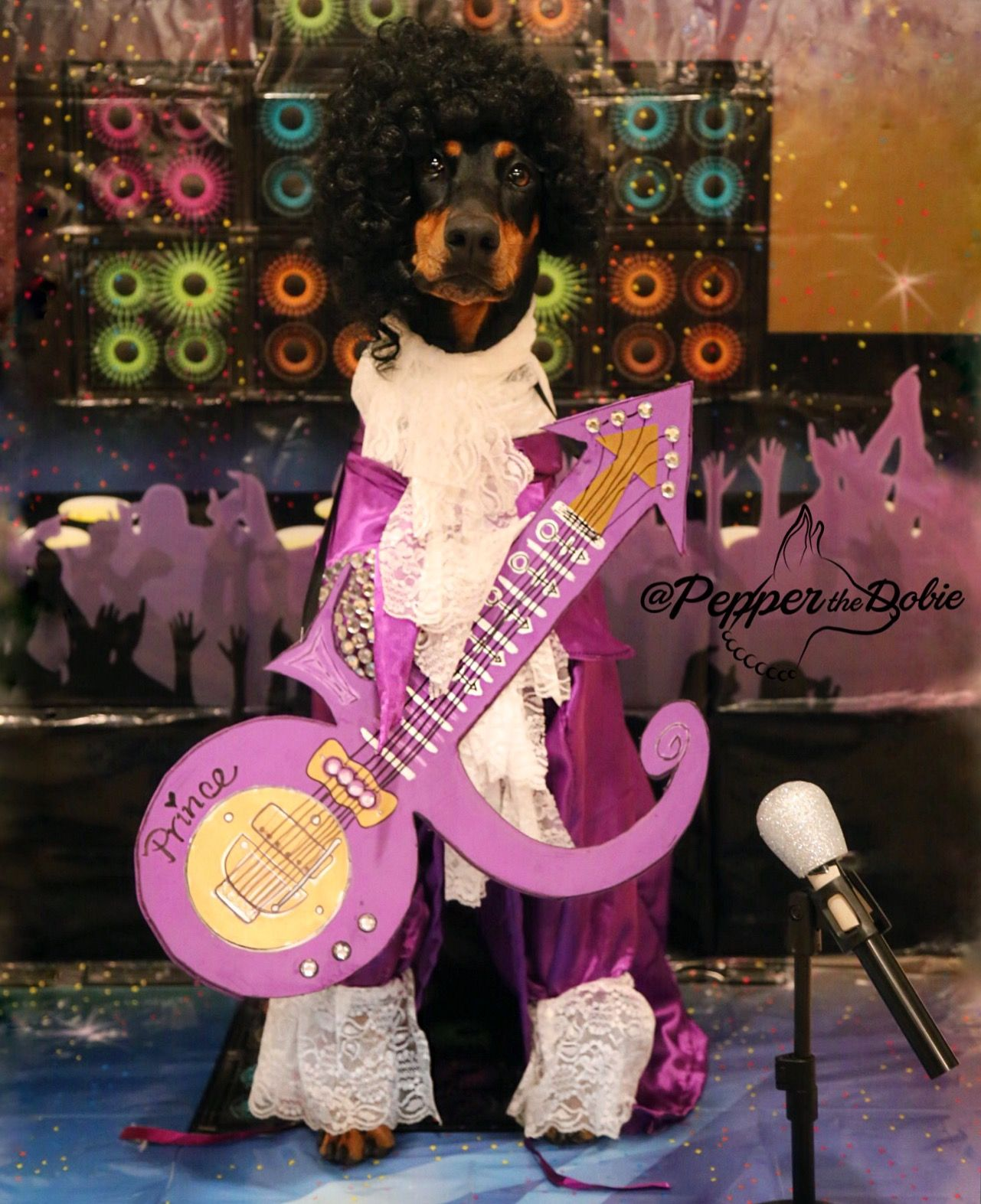 Image result for animals in prince purple rain costume