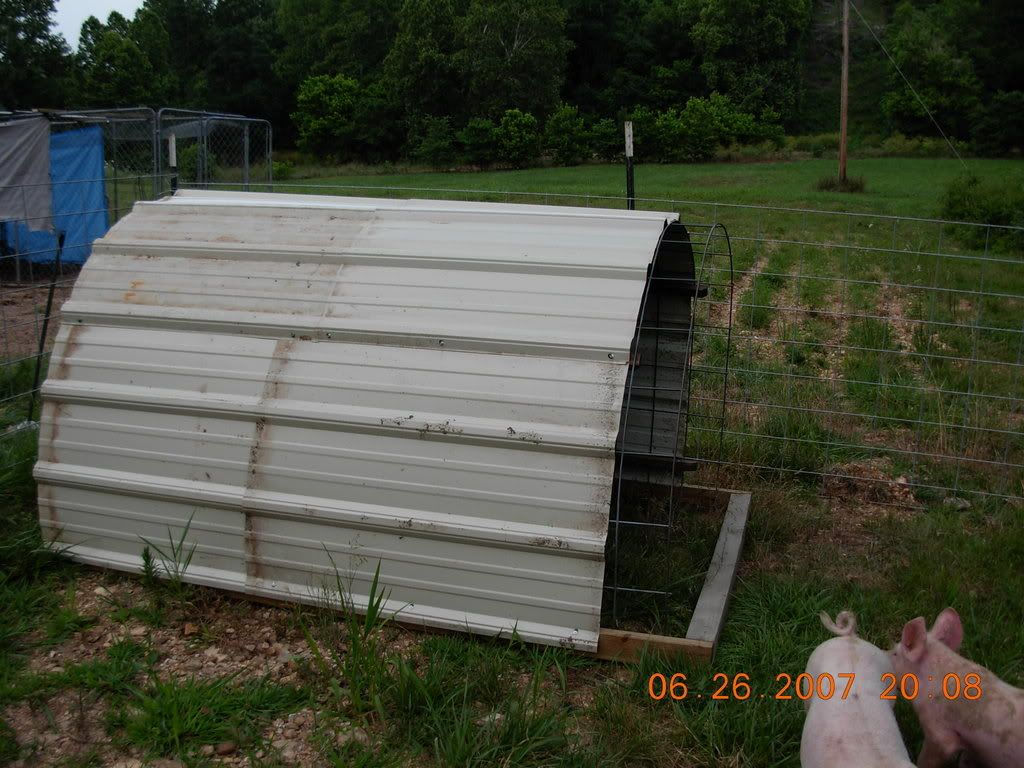 Pig Shelter Advice Pig Shelter Outdoor Tortoise Enclosure Horse Shelter