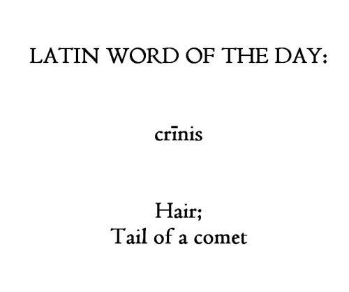 Crinis Palabras Y Idiomas