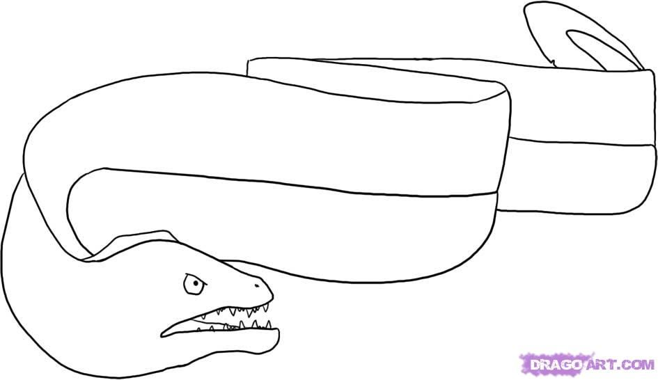 How To Draw An Eel By Dawn Drawing Tutorial Online Drawing