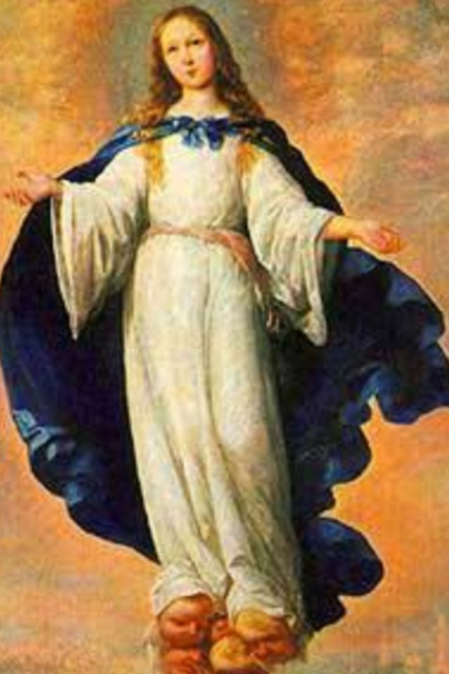 """Upon her entrance into heaven, our dear Mother humbly presented herself before God himself. She adored him and thanked him for all the graces bestowed upon her in life. Then our almighty God embraced his beloved daughter, blessed her, and declared her Queen of the universe, exalted above all the angels and saints.""  ~St Alphonse Liguori~"
