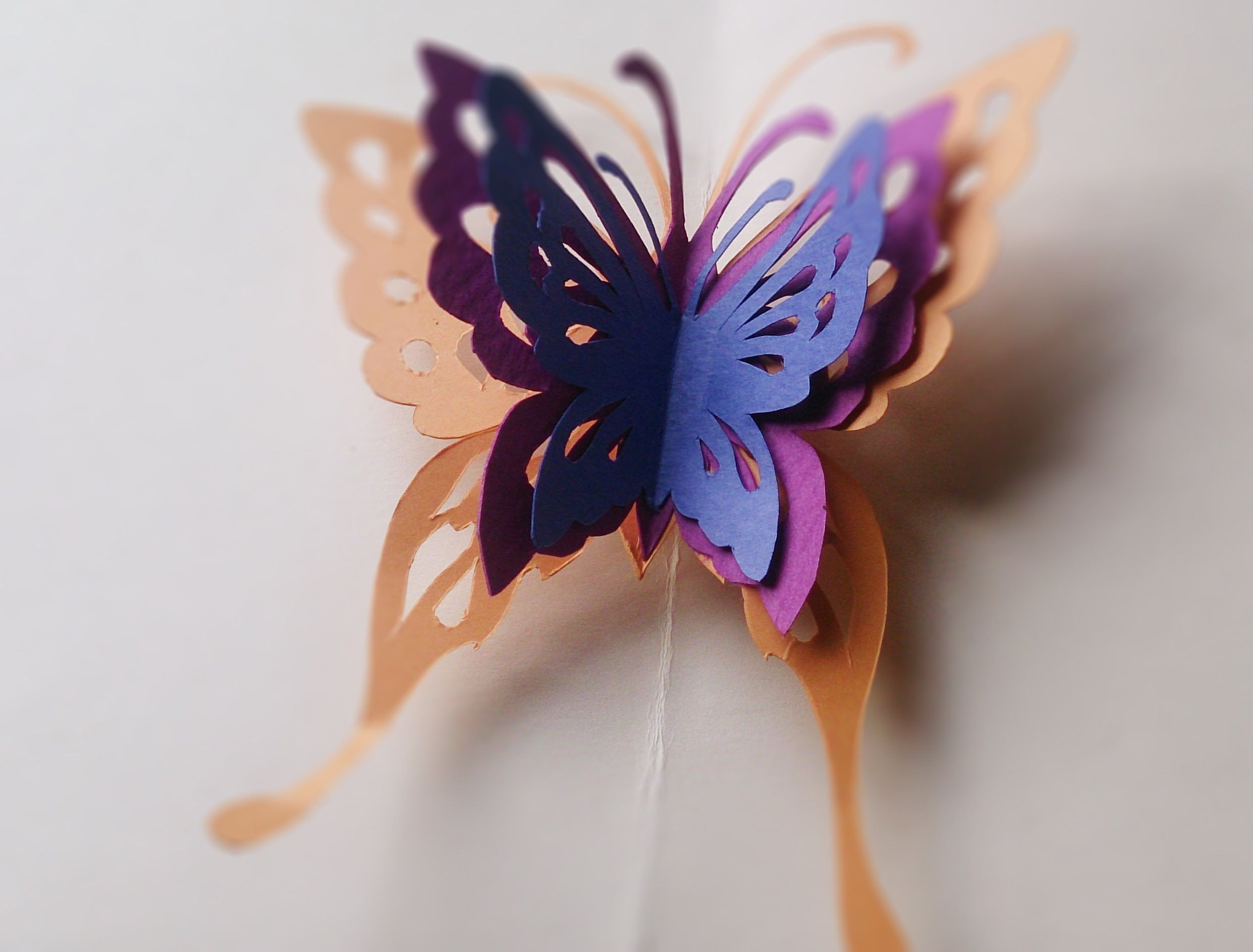How To Make Butterfly Pop Up Card  Aoc Craft