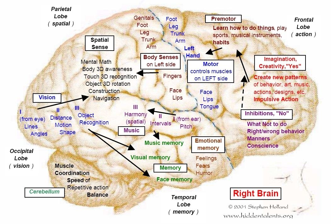 An understanding of the brain based learning