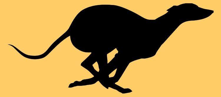 Greyhound Silhouette Clip Art | Running Greyhound ...