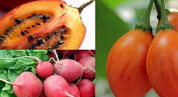 Jugo de tomate y rabano para adelgazar