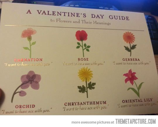 Flowers And Their Meanings…