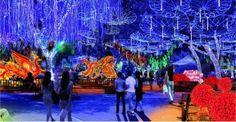 GEORGIA: Top 20 Atlanta Christmas Events