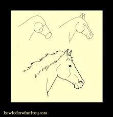 """Résultat de recherche d'images pour """"tete de cheval de face dessin"""""""