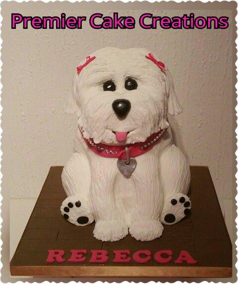 Bichon Dog Cake