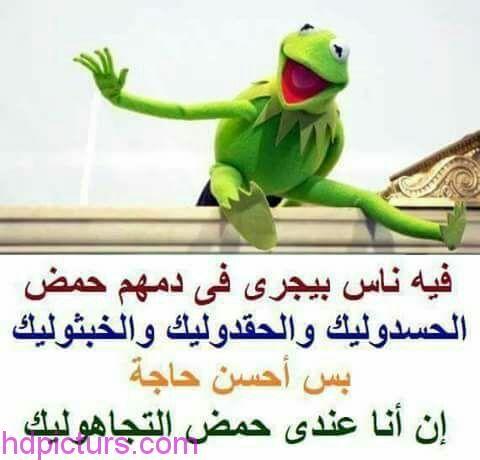 صور نكت نكت مضحكة بالصور تحشيش فيس بوك كلام مضحك و صور مضحكة جميلة للتحميل مجانا لواتس اب و جوجل بلس ان شاء الله Fun Quotes Funny Dora Funny Memes